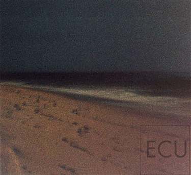 Color photograph taken at night along a Southampton beach in New York off the Atlantic Ocean with a full moon in an impressionistic style