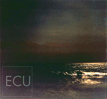 Color photograph taken at night along the Southampton beach in New York of the Atlantic Ocean with a full moon in an impressionistic style