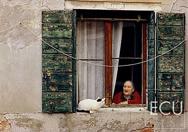 Color photo of a cat and a woman in the Dorsoduro sestiere of Venice, Italy