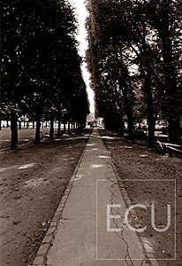 Black and white photo of the Luxembourg gardens taken in the 6th arrondisement in Paris, France